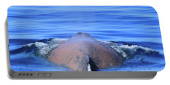 Rusty Humpback Portable Battery Charger by Shoal Hollingsworth