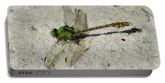 Rusty Snaketail Portable Battery Charger