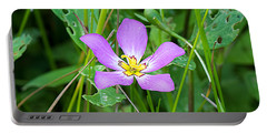Sabatia Portable Battery Charger by Kenneth Albin
