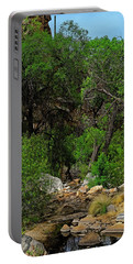 Portable Battery Charger featuring the photograph Sabino Canyon V49 by Mark Myhaver