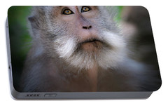 Sacred Monkey Forest Sanctuary Portable Battery Charger by Larry Marshall