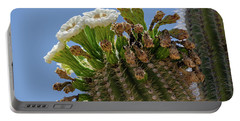 Portable Battery Charger featuring the photograph Saguaro Blooms by Gaelyn Olmsted