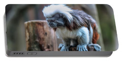Portable Battery Charger featuring the photograph Saguinus Oedipus  by Traven Milovich