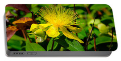 Saint John's Wort Blossom Portable Battery Charger
