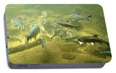 Portable Battery Charger featuring the photograph Salmon And Sturgeon by Katie Wing Vigil