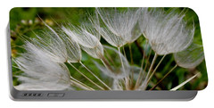 Salsify  Portable Battery Charger