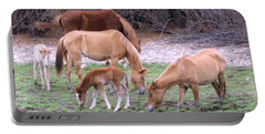 Salt River Wild Horses In Winter Portable Battery Charger