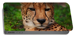 Portable Battery Charger featuring the photograph Samson by Michiale Schneider