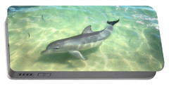 Portable Battery Charger featuring the photograph Samu 1 , Monkey Mia, Shark Bay by Dave Catley