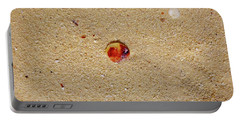 Portable Battery Charger featuring the photograph Sand Shell Art by Francesca Mackenney