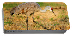 Sandhill Crane Grazing Portable Battery Charger