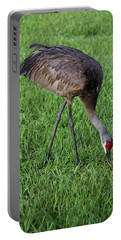 Sandhill Crane II Portable Battery Charger by Richard Rizzo