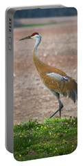 Portable Battery Charger featuring the photograph Sandhill Crane In Profile by Bill Pevlor