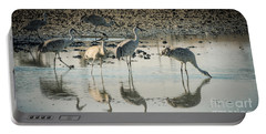 Sandhill Crane Reflections Portable Battery Charger