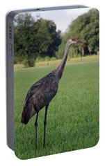 Portable Battery Charger featuring the photograph Sandhill Crane by Richard Rizzo