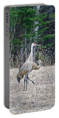 Portable Battery Charger featuring the photograph Sandhill Cranes 1166 by Michael Peychich
