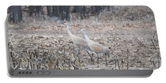 Portable Battery Charger featuring the photograph Sandhill Cranes 1171 by Michael Peychich