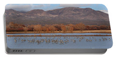 Portable Battery Charger featuring the photograph Sandhill Cranes Beneath The Mountains Of New Mexico by Max Allen