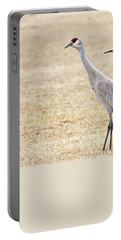 Portable Battery Charger featuring the photograph Sandhill Cranes Of Montana by Jennie Marie Schell