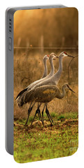 Portable Battery Charger featuring the photograph Sandhill Cranes Texas Fence-line by Robert Frederick