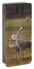 Portable Battery Charger featuring the photograph Sandhill Delight by Shari Jardina