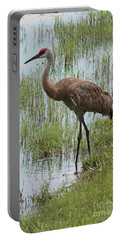 Sandhill In The Marsh Portable Battery Charger