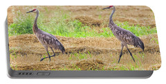 Portable Battery Charger featuring the photograph Sandhill Pair  by Ricky L Jones