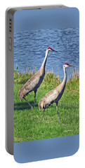 Sandhill Pair Portable Battery Charger
