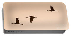Sandhills In Flight In Sepia Portable Battery Charger