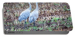Sandhills In Their Fall Coat Portable Battery Charger