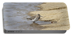 Sandpiper At The Shore Portable Battery Charger