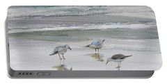 Sandpipers Portable Battery Charger