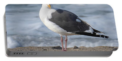 Santa Monica Seagull Portable Battery Charger by Margaret Brooks