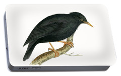 Starlings Portable Battery Chargers