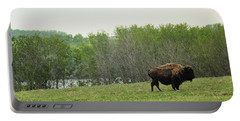 Portable Battery Charger featuring the photograph Saskatchewan Buffalo by Ryan Crouse