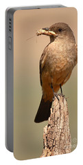Say's Phoebe On Perch With Grasshopper In Beak Portable Battery Charger