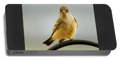 Say's Phoebe Ranch Bird Portable Battery Charger