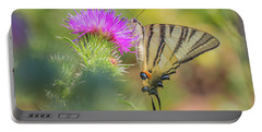 Scarce Swallowtail - Iphiclides Podalirius Portable Battery Charger