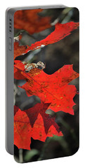 Scarlet Autumn Portable Battery Charger