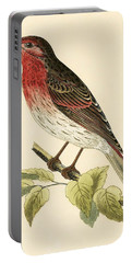 Scarlet Bullfinch Portable Battery Charger