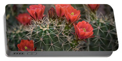 Portable Battery Charger featuring the photograph Scarlet Hedgehog Cactus  by Saija Lehtonen