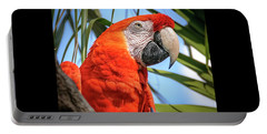 Portable Battery Charger featuring the photograph Scarlet Macaw by Steven Sparks