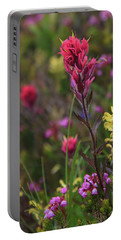 Portable Battery Charger featuring the photograph Scarlet Paintbrush by David Chandler
