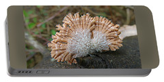 Portable Battery Charger featuring the photograph Schizophyllum Commune by William Tanneberger