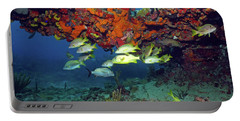 Schooling Fish At Calf Rock Portable Battery Charger