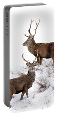 Scottish Red Deer Stags Portable Battery Charger