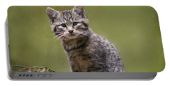 Scottish Wildcat Kitten Portable Battery Charger