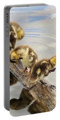 Preening Frenzy Portable Battery Charger