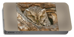 Screech Owl On Spring Creek Portable Battery Charger