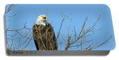 Screeching Eagle Portable Battery Charger by Brook Burling